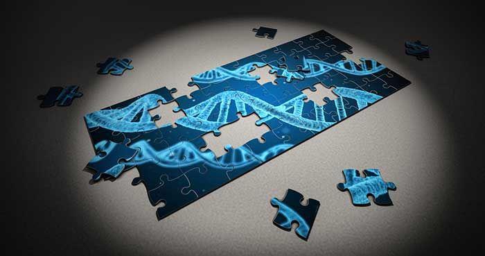 Dị ứng là gì? Có do gen di truyền không?