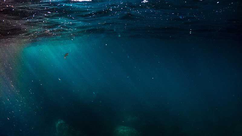 Cách điều trị chứng ám ảnh sợ biển