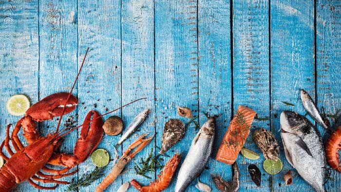 Dị ứng hải sản là gì? Nguyên nhân, triệu chứng và cách phòng ngừa