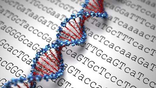 Xét nghiệm Gene ở đâu, bao nhiêu tiền?