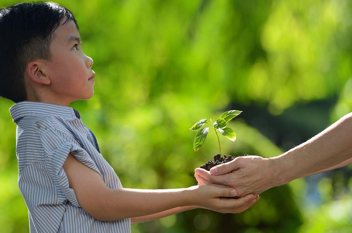 Gene di truyền có thể quy định khả năng học thuật của trẻ