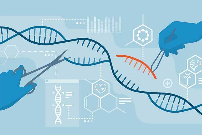 Những lưu ý khi xét nghiệm gen